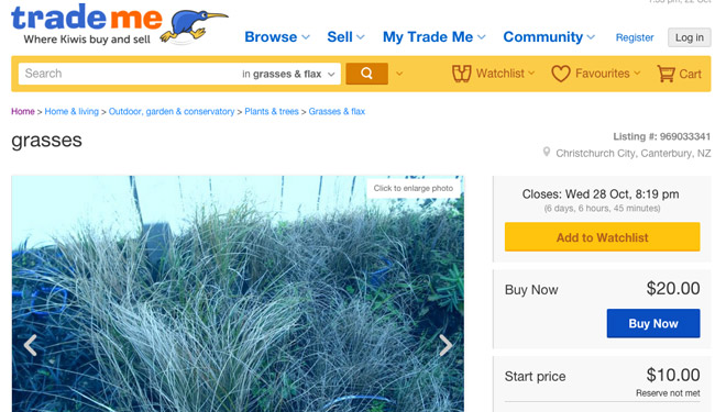 "Figure 2: Snapshot of ""Trade Me"", a NZ website now removing illegal listings"